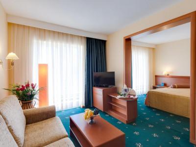 Imagini Hotel PALAS